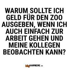 #stuttgart #mannheim #trier #köln #koblenz #mainz #ludwigshafen #geld #ausgaben #arbeit #zoo #kollegen #büro #arbeit #beobachten #tiere #haha #witzig #lol #lustig #sprüche #mittwoch #lustigesprüche #spaß #fun #cool Nice Ideas, Laugh Out Loud, Laughing, Haha, Words, Mainz, Trier, Lol Funny, Wednesday