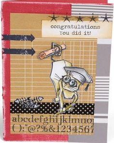 crazy cats - diploma