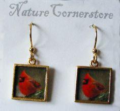 Red Cardinal Frame Earrings | NatureCornerstore - Jewelry on ArtFire