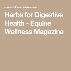 Herbs for Digestive Health - Equine Wellness Magazine