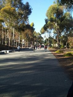 University of California, San Diego (UCSD) en La Jolla, CA