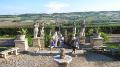 Il #giardino di Villa Buonaccorsi Palace Garden, Palaces, Villas, Patio, Outdoor Decor, Italia, Palace, Villa, Mansions