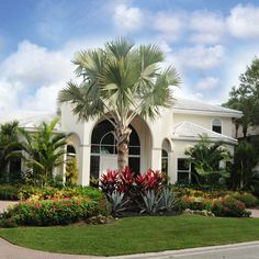 Palm Trees Landscaping Front Yard Landscaping Landscaping Ideas Farm Houses Big Houses Driveway Design Front Yards Casa Linda Mansions Homes Palm Trees Landscaping, Florida Landscaping, Home Landscaping, Tropical Landscaping, Landscaping With Rocks, Front Yard Landscaping, Florida Gardening, Landscaping Design, Front Yard Decor