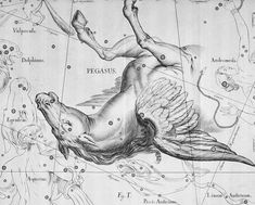 Pegasus, the boreal constellation of the Winged Horse, illustration. Pegasus Constellation, Statues, Precession Of The Equinoxes, Winged Horse, Zodiac Constellations, Science Art, Ancient Greece, Vintage Advertisements, Vintage Prints