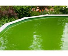 1000 ideas about redneck pool on pinterest pool heater - How to clean a dirty swimming pool ...