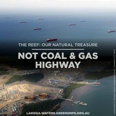 """""""The degradation of the Great Barrier Reef is a national disgrace of the highest order, and repairing it should go beyond politics.""""  It should - but the old parties won't join the Greens to save the Reef. Share this if you want Labor & Liberal to help us stop massive coal & gas ports ruining the Reef."""