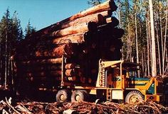 off road logging trucks | VANCOUVER ISLAND OFF HIGHWAY LOGGING TRUCK - photo from the web