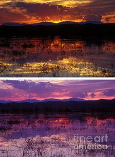 #Sunset at the #bosquedelapache, taken the same evening from the same spot.