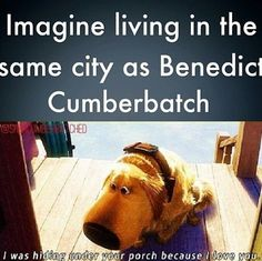 Not so much Benedict Cumberbatch but Tom Hiddleston would probably have to put out a restraining order on me Sherlock Bbc, Sherlock Fandom, Benedict Cumberbatch Sherlock, Watson Sherlock, Jim Moriarty, Sherlock Quotes, Funny Sherlock, Johnlock, Destiel