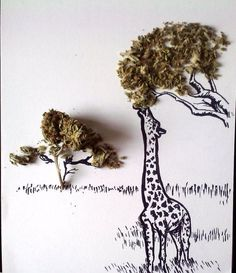 Awesome artwork. The trees are made of cannabis :) Cute giraffe's.