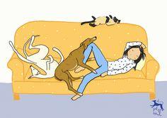 Ilustración sobre la siesta perruna, por El galgo azul