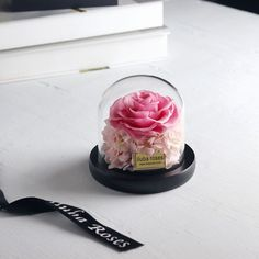 Iluba Pink Forever Rose In Glass Vase Rose Gift Gifts Forever Rose