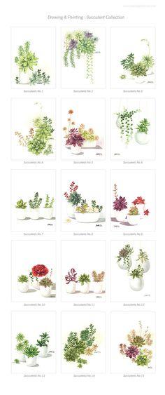 Any ONE Succulents - 8'x11.5' Fine Art Print. $18.00, via Etsy.