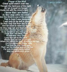 Most beautiful words for the Wolf.