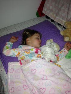 The Great Bedtime Negotiator
