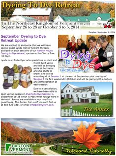 September Dyeing to Dye Retreat Update