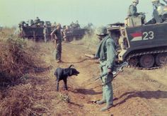 An American soldier tries to make friends with a stray dog while on patrol. ~ Vietnam War
