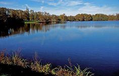 Tolle Oktobersonne heute nochmal im Saarland. ...  Wohl dem, der sie heute nochmal genießen konnte. Sie schien u.a. auch am Noswendeler See. :-)