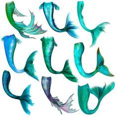 Mermaid Tail Overlay for Photoshop Mermaid Tail Drawing, Mermaid Drawings, Mermaid Tattoos, Mermaid Tails, Drawings Of Mermaids, Mermaid Sketch, Mermaid Images, Mermaid Photos, Anime Mermaid