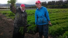 How can CNR 2015 support farm to school?