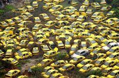 Yellow cab graveyard.