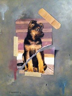 Jay Davenport, Bruiser, 2013, oil on panel, 12 X 9 inches
