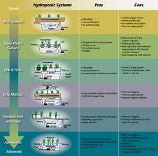 Image result for hydroponics how it works