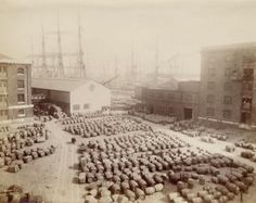 The Western Quay at the London Docks. (Royal Museaum Greenwich)