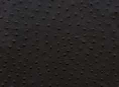 blackostrichl.jpg (1024×748)