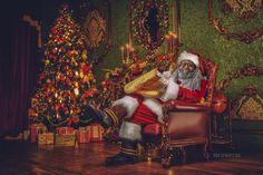 "Shamontiel wrote ""Black Santa has his ear to the street ~ What does Santa do the rest of the year?"" #blackmen #blacklivesmatter #humanitarianism #Chicago #ChicagoLeaders #fatherfigures #BlackSanta #HappyHolidays #MerryChristmas (Photo courtesy of #DreezySanta)"