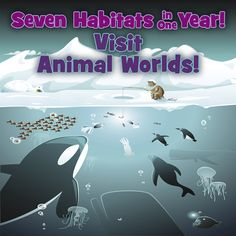 Discover seven habitats and the animals that live in them in this amazing program. Dive into our 350 page, full-color interactive student journal that will be at the heart of your student's journey. Check it out here! This program is for Pre-K - 4th graders.