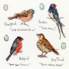 Garden Birds 3 Cross Stitch Kit £26.25 | Past Impressions | Bothy Threads