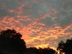 November evening in Clermont, FL