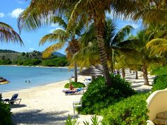 Antigua - St. James Club. Island Beach, Favorite Holiday, Postage Stamps, Britain, Caribbean, Traveling By Yourself, Travel Destinations, Exotic, Beautiful Places
