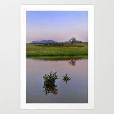 Serenity sunset. Spring dreams Art Print by Guido Montañés - $20.00