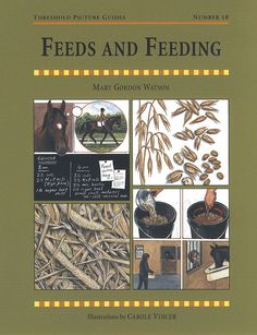 Threshold Picture Guide No. 10 Feeds and Feeding by Mary Gordon Watson | Quiller Publishing. A guide to horse and pony feeds along with straightforward advice on feeding horses and ponies, whether kept at grass or stabled. #horse #pony #food #health #stable #grass #feeding #rations