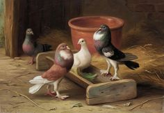 Pigeons I by Edgar Hunt | Art Posters & Prints