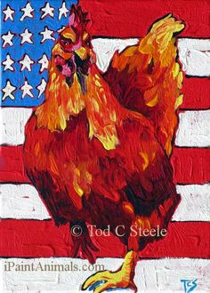 Chicken Painting - All-American Chick - Art Print from Original Painting by Tod C Steele - American Flag - 5x7 - 4th of July via Etsy