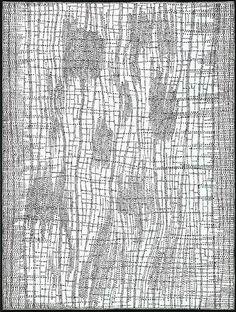 Dorothy Robinson Napangardi - Salt on Mina Mina 122.5 x 92.5cm