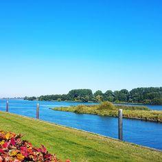 Die schöne Elbe in Hoopte  Foto: Jens Kowald Golf Courses, Pictures, Nice Asses