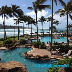 Turtle Bay on Oahu ❤️