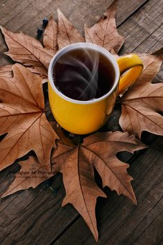 Coffee Autumn