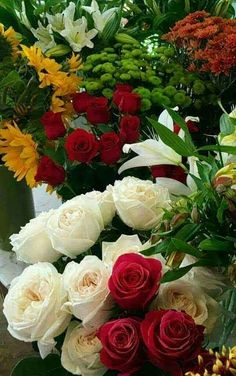 Flowers for you! Very Beautiful Flowers, Beautiful Flower Arrangements, Pretty Roses, Exotic Flowers, Amazing Flowers, No Rain No Flowers, Flowers For You, Love Flowers, Rose Images