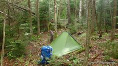 Skilled campsite placement can reduce the impact of cold temperatures and wind, help eliminate any chance of being flooded out by heavy rain, and reduce any danger from falling widow-makers.