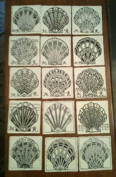 zentangle seashells