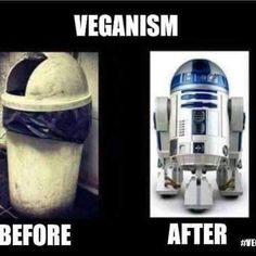 Veganism before and after / vegan meme / vegan humor / vegan lifestyle / / … – Vegan 2020 Vegan Memes, Vegan Quotes, Vegan Foods, Vegan Desserts, Funny Picture Quotes, Funny Pics, Funny Pictures, Funny Memes, Hilarious