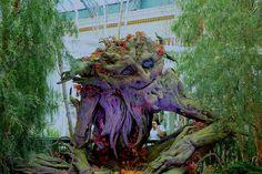 unusual trees | Tree people. Bellagio Conservatory | Unusual Trees