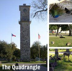 5 Free Things to do in San Antonio, Texas