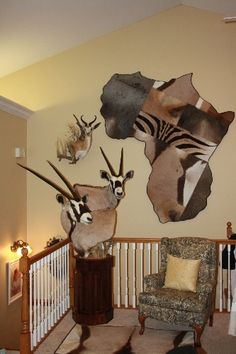 various african mounts mounted for Mike and Andy Scwend - 2014 - springbok wall pedestal with habitat accent , double Gemsbok pedestal on custom made, . Hunting Lodge Decor, Hunting Cabin, Deer Hunting, Taxidermy Display, Taxidermy Decor, Animals With Horns, Deer Mounts, African Theme, Trophy Rooms