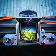 Camera Pentacon six tl